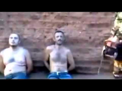 Cartel Murder Videos