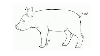 How to Draw a Pig / Как нарисовать свинью