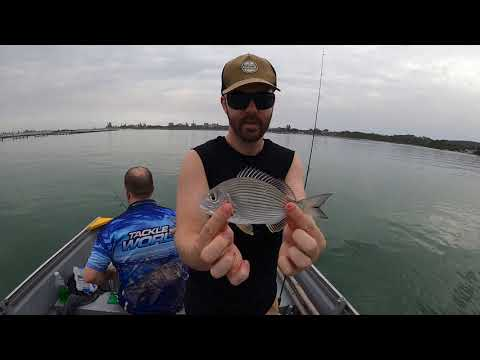 NSW Forster Hire Boat Fishing With The Gun Troy!
