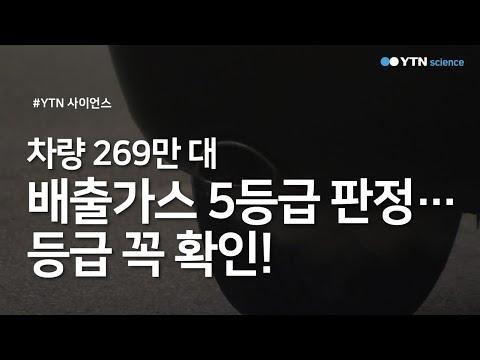 차량 269만 대 배출가스 5등급 판정...등급 꼭 확인! / YTN 사이언스