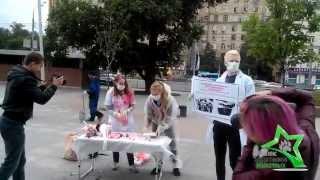 Акция против опытов на животных - 11.07.2014