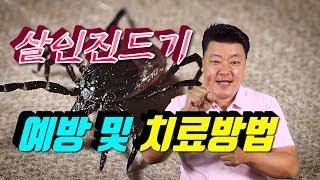 살인진드기 예방 및 치료방법 #수화생활정보 #수화뉴스 …
