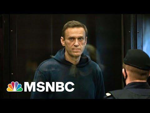 Navalny Appears In Court After Ending Hunger Strike   MSNBC