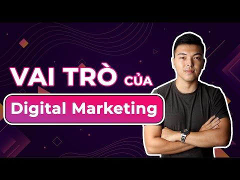 Vai trò digital marketing là gì? hiểu đúng về digital marketing
