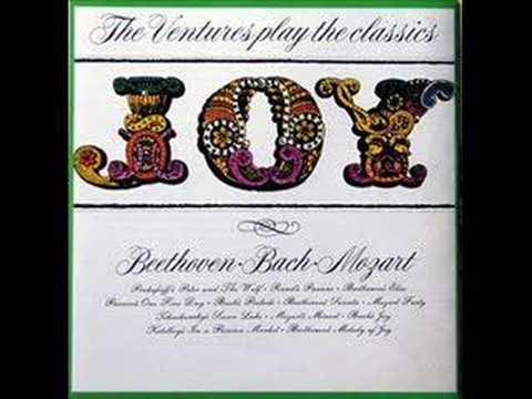 Joy - The Ventures