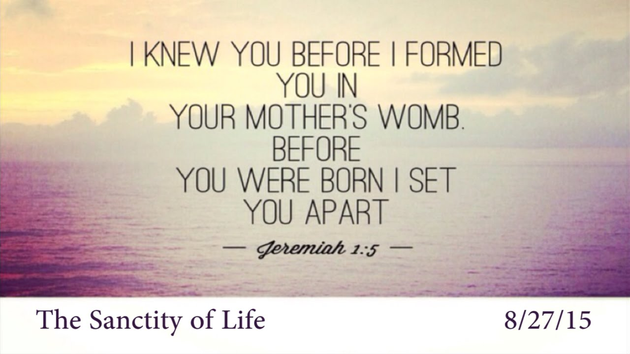 the sanctity of life and the 1 the sanctity of life isaiah 49: 5 & 6 and now the lord says he who formed me in the womb to be his servant to bring jacob back to him and gather israel to himself, for i am honored in the eyes of the lord.