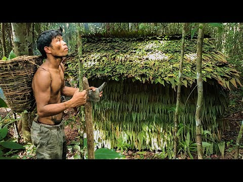 Primitive Technology, Build houses in the forest using the leaves of trees - Leaf roof