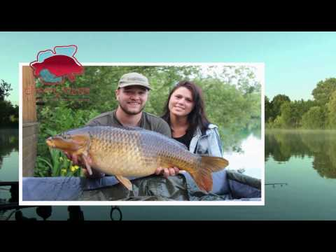 Carp Fishing  Holidays At Cherry Lakes