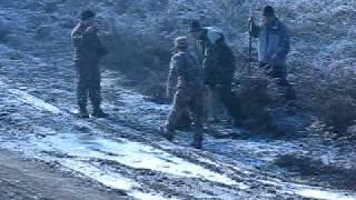 Лайка-4, притравка по барсуку в Алматы