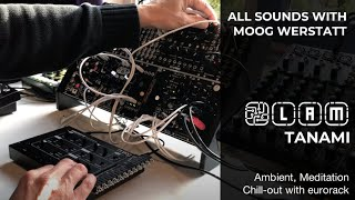 TANAMI: Chillout music with MOOG WERKSTATT-01 & CV EXPANDER