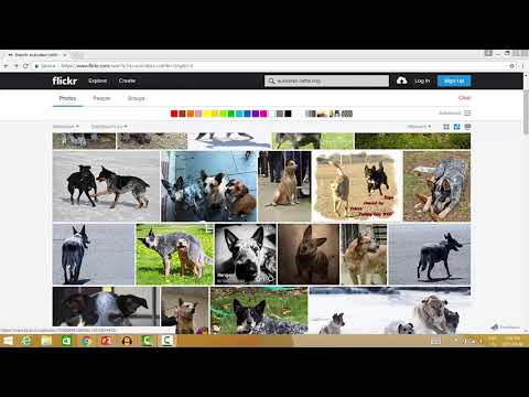 Finding Creative Commons and Public Domain Images on Flickr