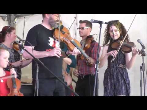 Melbourne Scottish Fiddlers play Dufftown set  at the Surrey Hills Music Festival 19th November 2016