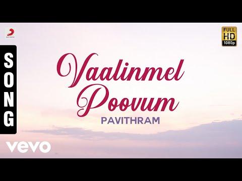 Pavithram - Vaalinmel Poovum Malayalam Song | Mohanlal, Shobana