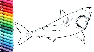 Drawing and Coloring Megalodon Shark - How to Draw Dinosaurs Color Pages For Childrens