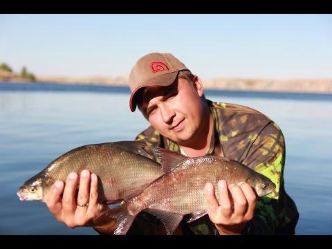 Рыбалка видео онлайн :: фильмы и передачи о рыбалке и