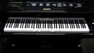 グランドピアニストにいろいろ弾かせてみます ELO エレクトリック・ライ...