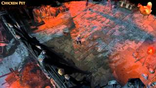 Path of Exile - Chicken Pet