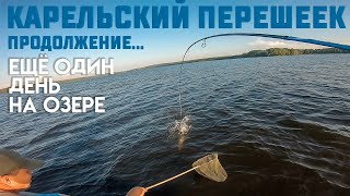 Озере Карельского перешейка Ловля щуки и окуня на джиг Рыбалка на спиннинг Летняя рыбалка