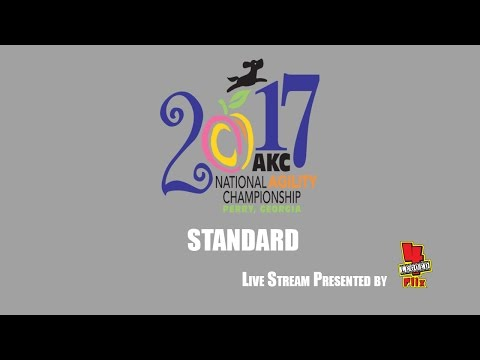 "2017 AKC National Agility Championship: Ring 3 - Standard (16/24/26"")"