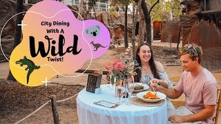 City Dining With A Wild Twist!
