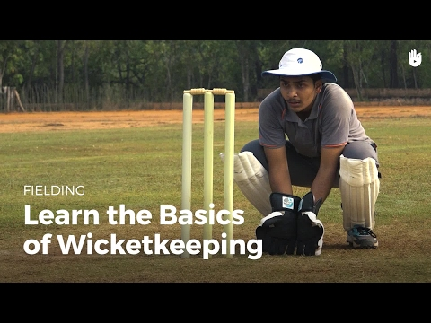 Learn The Basics Of Wicketkeeping   Cricket