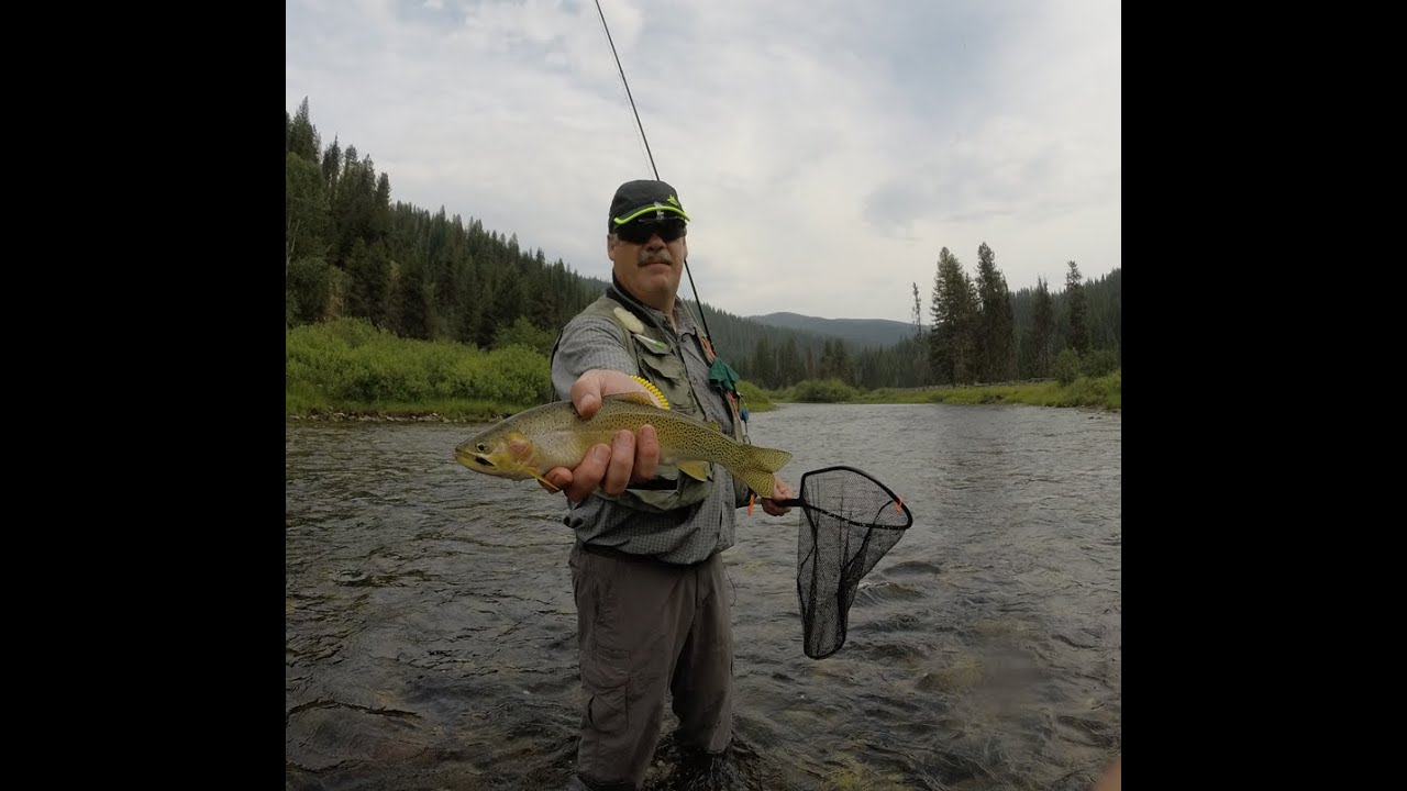 fly fishing at the st joe river idaho gopro youtube