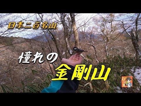 【登山】 日本二百名山の金剛山に登って来ました