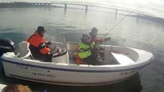 Anny's Fishing Adventures april 2013 (Fishing, Vissen, Fisk, Angeln, Middelfart, Little Belt)