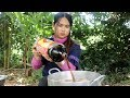 Awesome Cooking Chicken With Big Coca Cola Delicious Recipe - Eating Food Show