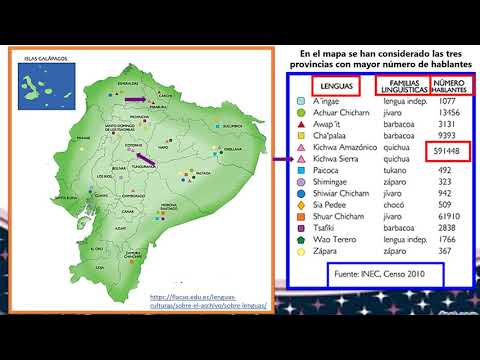 Lenguas Del Ecuador Youtube