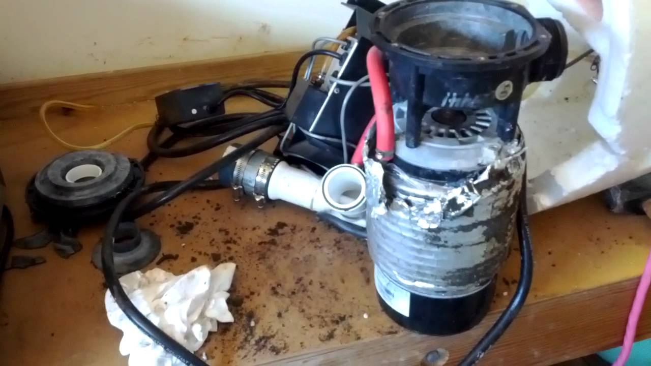 softub pump and motor assembly youtube