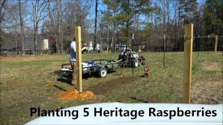 Part 2 - Time Lapse - Building A Muscadine / Grape / Raspberry / Blackberry Trellis