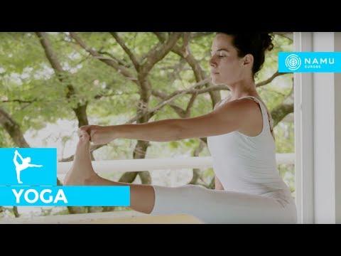 Aula de yoga - ashtanga yoga para iniciantes | Heloísa Benichio