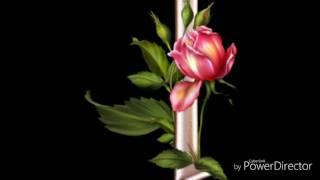 Sada Wally Dil Nazrana Rakh la)$(0321-4353440)
