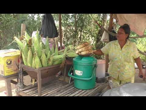 CAMBODIA TRIP 2017-18 (PART 34) (COMING BACK TO PHNOM PENH)