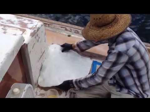 Atticus Update 9: Fiberglassing the deck repair