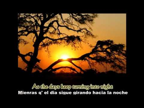 Alexi Murdoch - All my days ( Subtitulado español )
