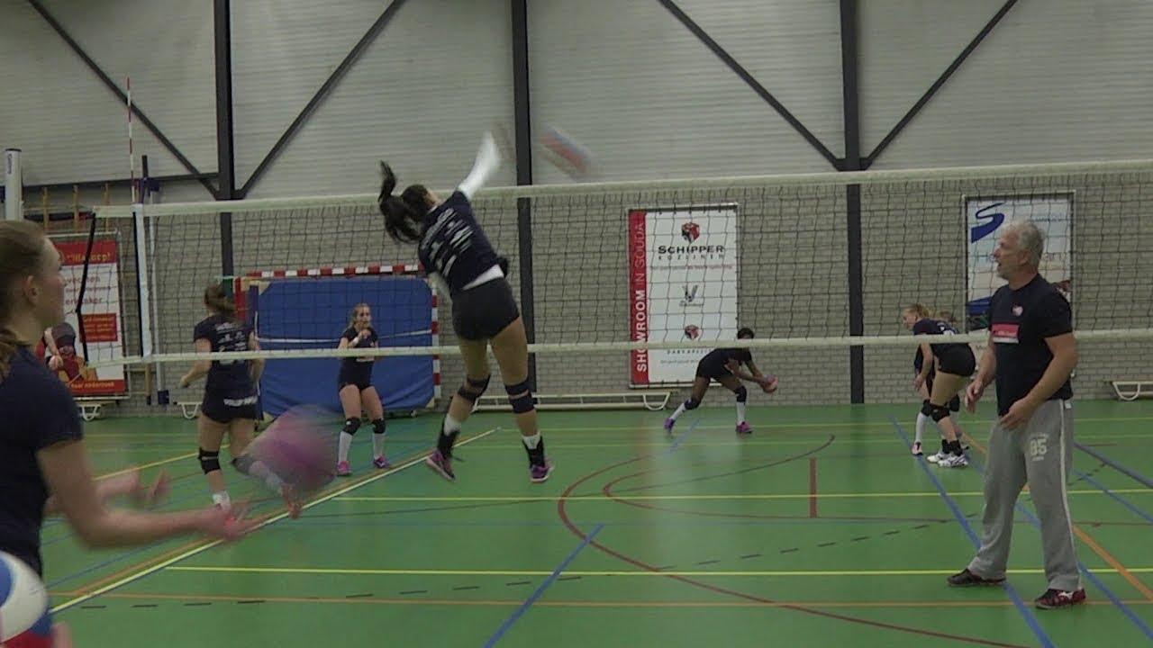 De damesselectie van VollingGo - Sport
