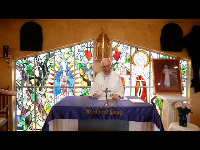 Day 9 - Fr. Michael Barry - Mercy Novena - Divine Mercy Chaplet