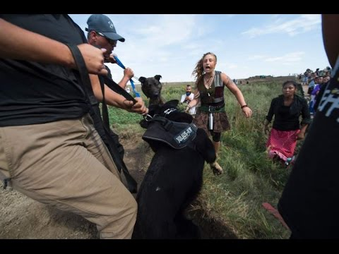 Native American Peaceful Protests in Standing Rock Reservation DAPL Update   CWTB