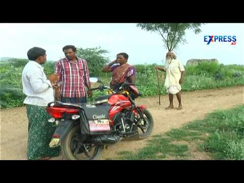Success story of Anjura or Fig farming by cauddapah farmer | Paadi pantalu - Express TV