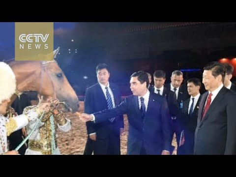 """Heavenly horse"": A bond between China and Turkmenistan"