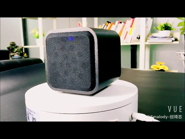 Smalody-D10BL Wireless Speaker