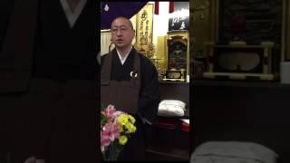 禅・禅宗寺・瞑想と覚醒から禅を考える