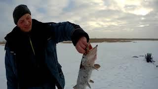 Зимняя рыбалка в Саратовской области Ловим щуку на 262 километре 03 01 2021 г