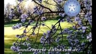 Cuento Esotérico para la iluminación: El Jardinero y El Forastero