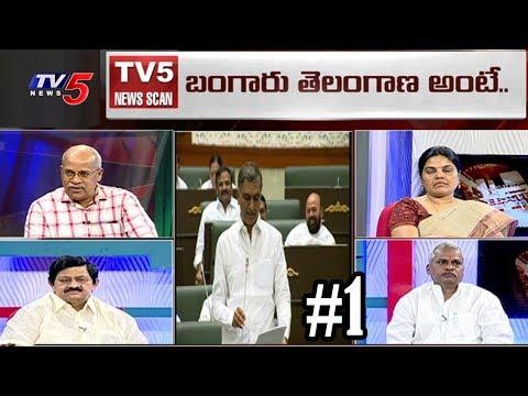 బంగారు తెలంగాణ రాత్రికి రాత్రే సాధ్యమా..?   Telangana Political Heat   News Scan #1   TV5 News