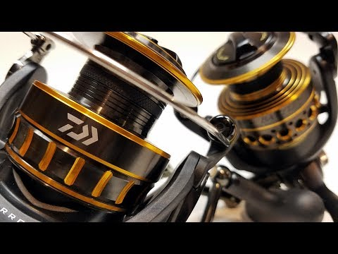 Daiwa BG Vs Penn Battle II: What's The Difference?   Comparison And Review