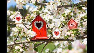 Der Liebesblick Frühlingsorakel März