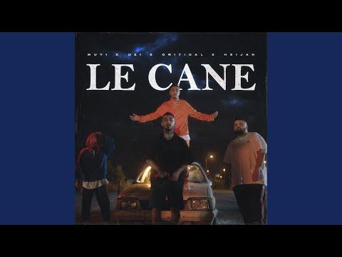LE CANE
